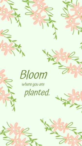planted_wl_20210308