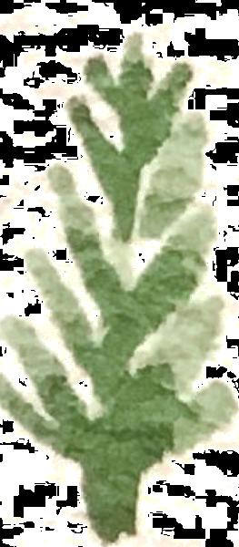 https://pub-static.haozhaopian.net/assets/res/sticker/111968fc-8753-412e-ad2c-d95176cde2a7_thumb.png