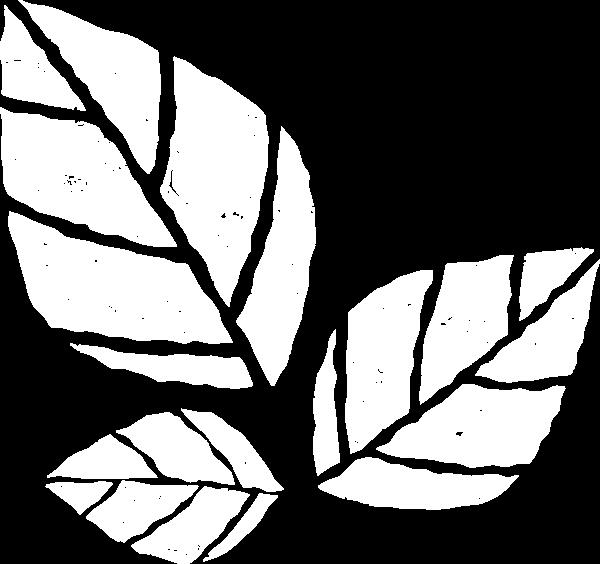 https://pub-static.haozhaopian.net/assets/res/sticker/4514a404-1c68-4141-8756-acb50a8c8b2a_thumb.png