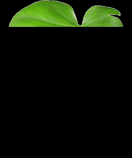 https://pub-static.haozhaopian.net/assets/res/sticker/6d32887e-424e-4fb1-a268-f325090e7208_thumb.png