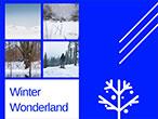 winter_copy_hzy_170125_01_short