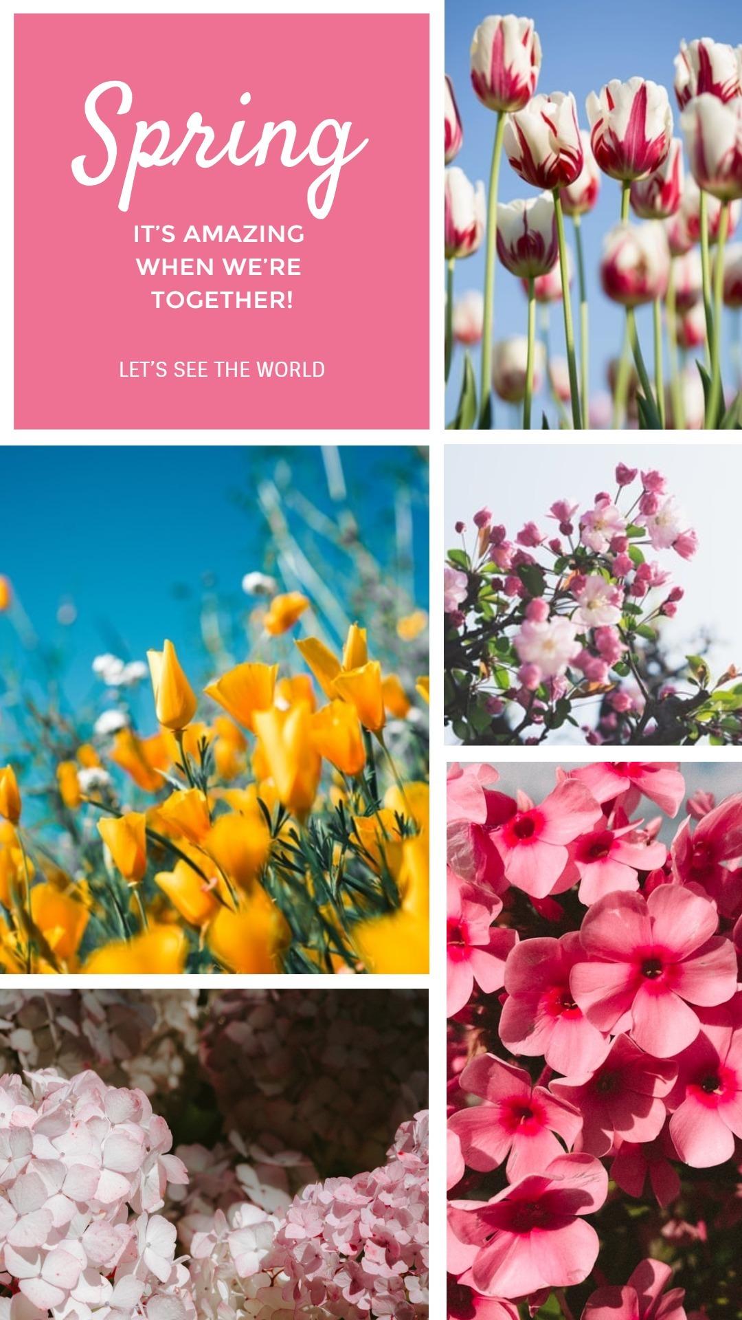 spring3_wl_20200228