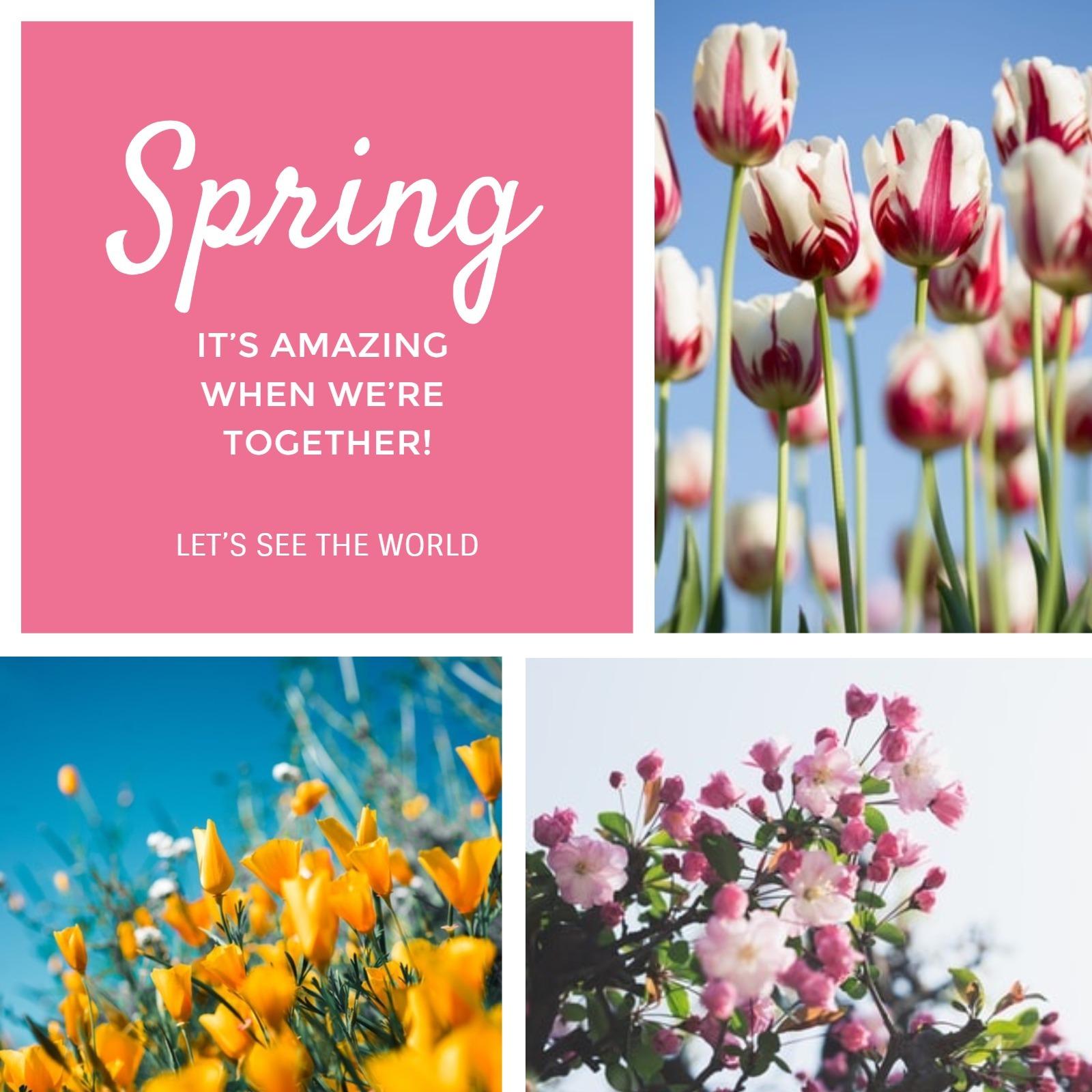 spring2_wl_20200228