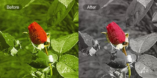 Color splash fotor free online color splash effect fotor photo editor